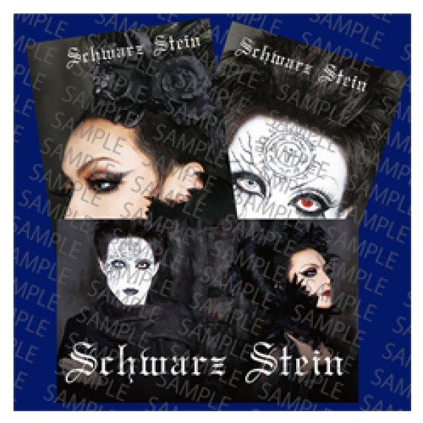 画像1: Schwarz Stein ステッカーセット (1)